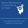 Consultant en Prévention des Risques Psychosociaux